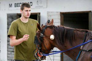Nikola Jokic with a horse, horses, NBA, basketball player and horses